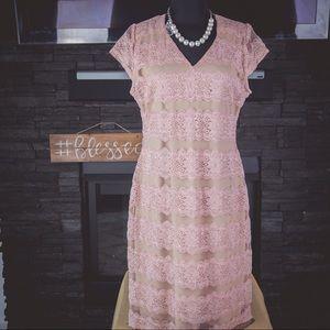 Dresses & Skirts - NWT Blush Lace Dress